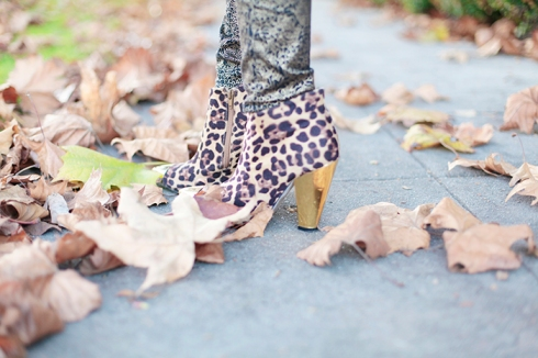 leopard_booties